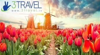 Autobusu ceļojums uz Nīderlandi - Holande - Keukenhofas ziedu parks