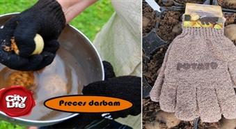 Abrazīvie cimdiņi dārzeņu mizošanai un mazgāšanai no Precesdarbam.lv – 50%
