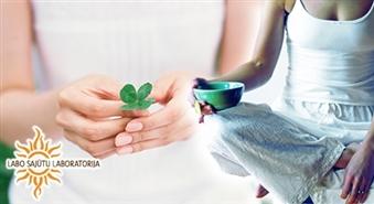 Labo Sajūtu Laboratorija: jogas nodarbību abonements mēnesim - 55%