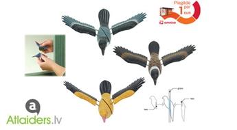 3D logu dekorācija, īsts lidojošais putns!