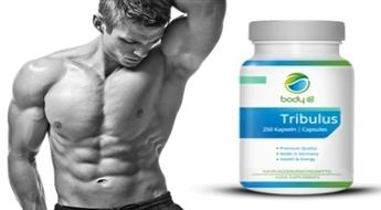 Капсулы трибулус, повышающие физическую выносливость людей, ведущих активный образ жизни -56%