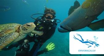 Iepazīsti zemūdens valstību: Niršana ar akvalangu (INTRO kurss) brīvā dabā no daivinga kluba JŪRAS VĒJŠ ar 56% atlaidi