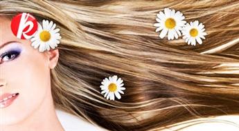 Šķipsnu balināšana vai matu krāsošana vienā tonī + moderns matu griezums + veidošana -53%