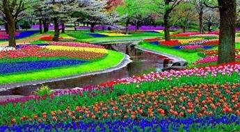 Holande: Ceļojums garantēts-03.05.17 uz Nīderlandes karalisko ziedu parku Keukenhofa!