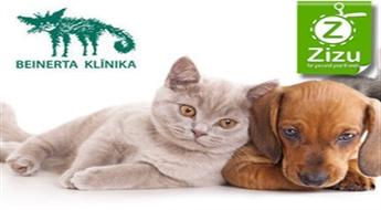 Kompleksā suņa, kaķa, mājas seska vai mājas truša vakcinācija, ES pase un mikročipēšana ar 30% atlaidi!