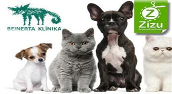 Kompleksā suņa, kaķa vai mājas seska vakcinācija, ES pase un mikročipēšana ar atlaidi līdz 42%!