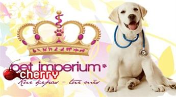 Teikas veterinārā klīnika: vizīte pie veterinārārsta (dzīvnieka vispārējā veselības stāvokļa novērtēšana un konsultācija) -75%